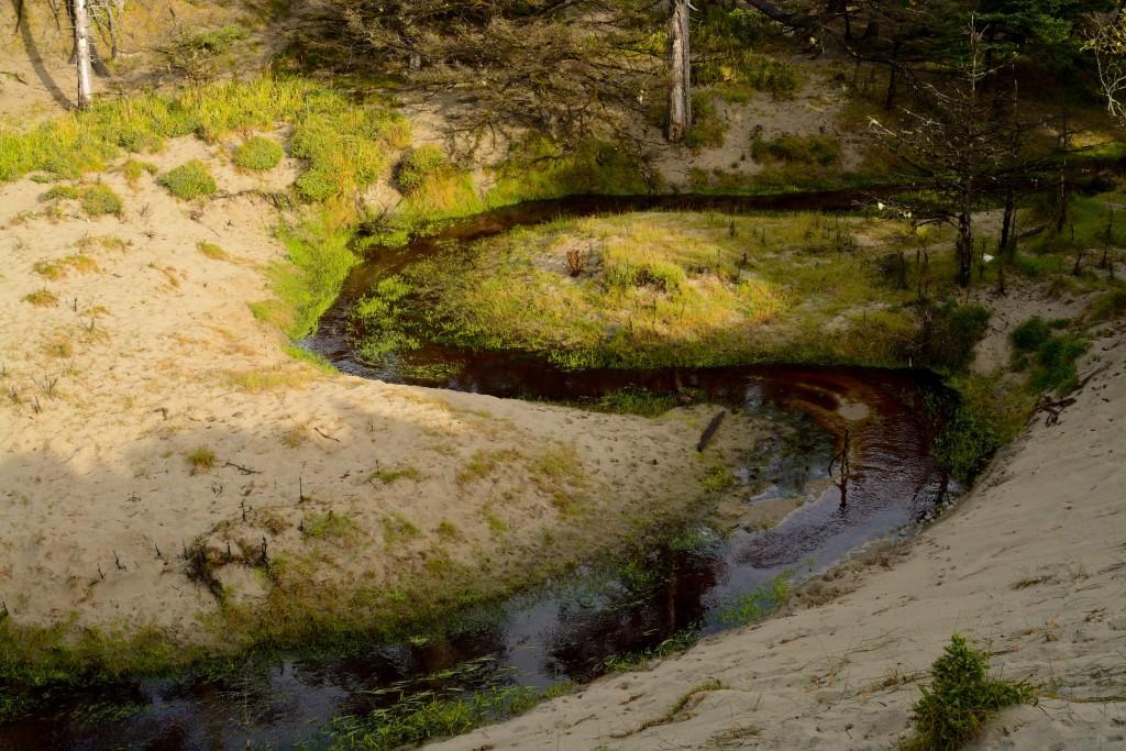 Mmmmm brown peat water....