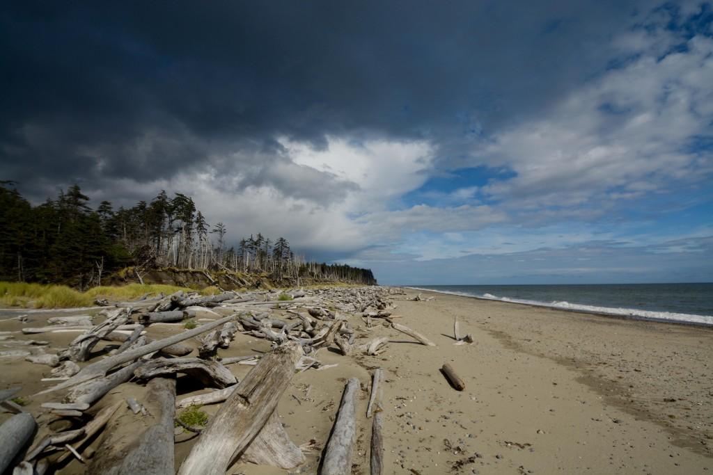 East Beach Trail Compressed_-29