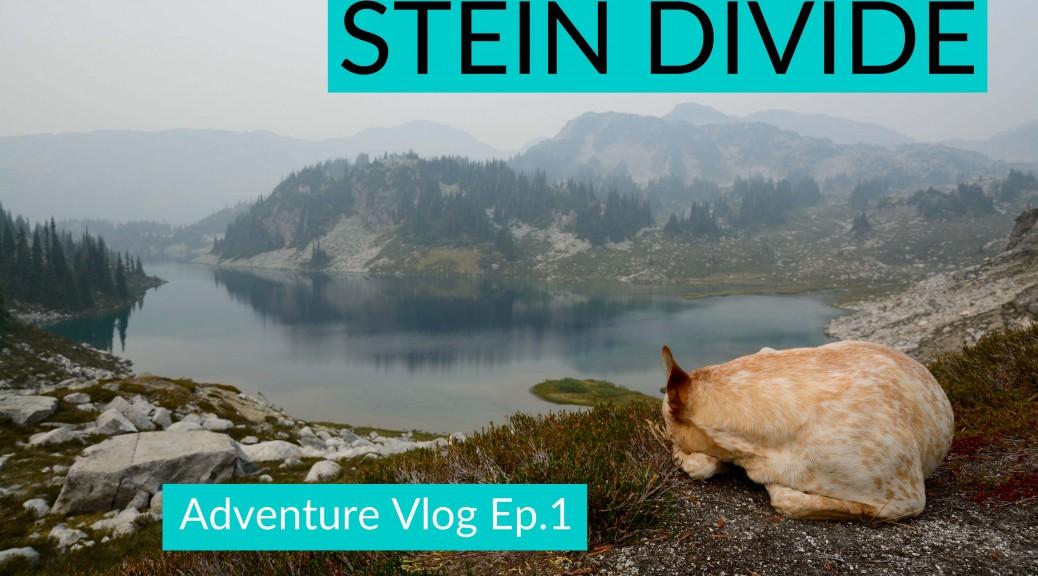 Stein Divide Vlog Clover sm